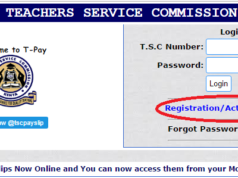 TSC PAYSLIP ONLINE REGISTRATION AND DOWNLOAD: TSC PORTAL